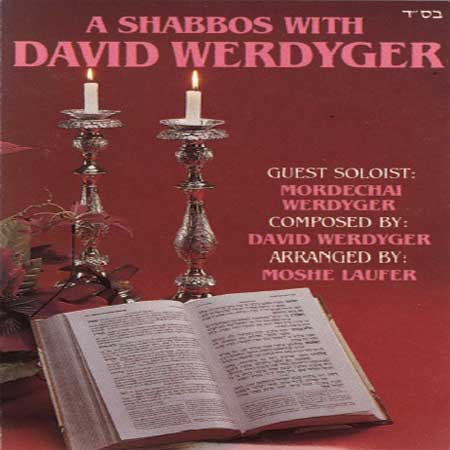 A Shabbos With David Werdyger