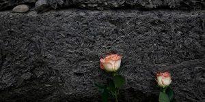 hoy-se-conmemora-el-dia-internacional-de-conmemoracion-de-las-victimas-del-holocausto